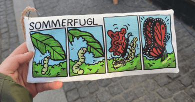 Learning the Insect Lingo While Working Abroad